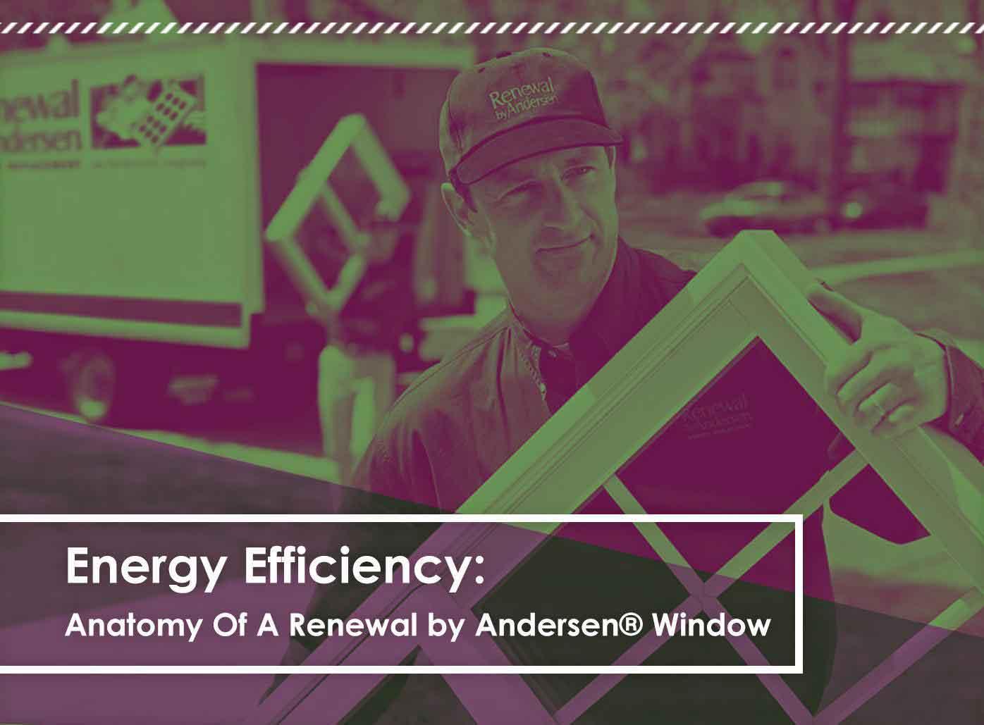 Energy Efficiency: Anatomy of a Renewal by Andersen® Window